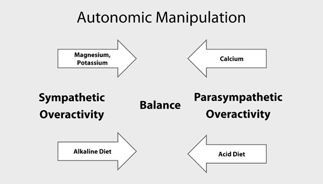 Using Diet to Balance the Sympathetic and Parasympathetic Nervous Systems – Part 2 of 3